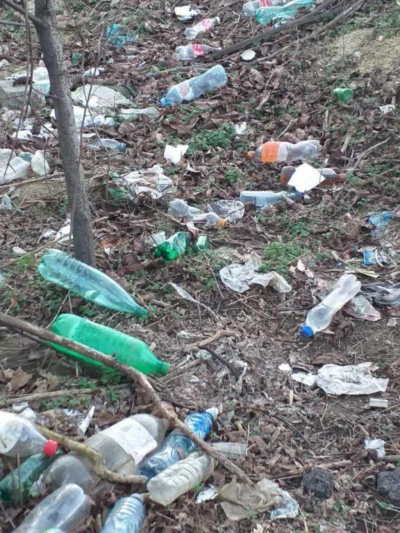 БОРБА ПРОТИВ ЗАГАЂЕЊА ЖИВОТНЕ СРЕДИНЕ или ко од еколошких проблема прави  бизнис?